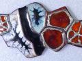 fossiles-cu-clois-arg-px